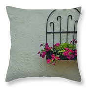Stucco Accent Throw Pillow