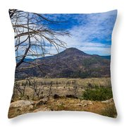 Studies On Sugarloaf Peak 1 Throw Pillow
