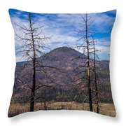 Studies On Sugarloaf Peak 2 Throw Pillow