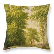 Study From Nature - Hoboken Throw Pillow