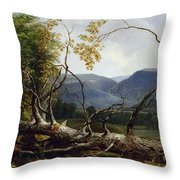 Study From Nature - Stratton Notch Throw Pillow