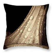 Study In Brown Throw Pillow