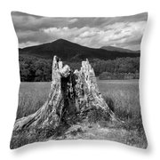 Stump In A Field Throw Pillow