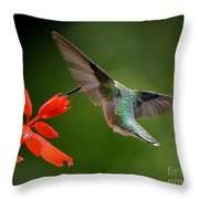 Style And Grace Throw Pillow