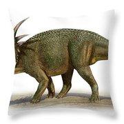 Styracosaurus Albertensis Throw Pillow