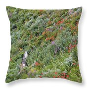 Subalpine Wildflowers Throw Pillow