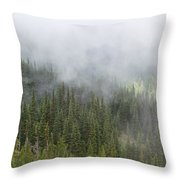 Sublime Beauty Throw Pillow