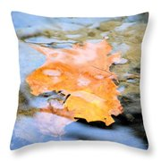 Submerged Sunset Throw Pillow