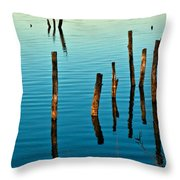 Submerged Trees At Sunset Throw Pillow