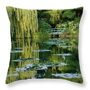 Subtle Light And Shade Reveal Throw Pillow