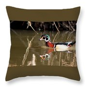 Sucarnoochee River - Suspicious Wood Duck Throw Pillow