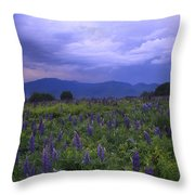 Sugar Hill Lupines Thunderstorm Clearing Throw Pillow