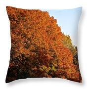 Sugar Maple Throw Pillow