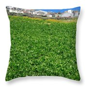 Sugarbeet Field Throw Pillow
