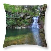 Sullivan Falls Throw Pillow