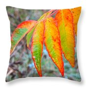 Sumac Leaves After The Rainfall Throw Pillow