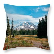 Summer At Mt. Hood In Oregon Throw Pillow