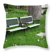 Summer Bench And Dandelions Throw Pillow