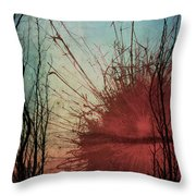 Summer Blast Throw Pillow