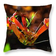 Summer Color Glow Throw Pillow
