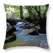 Summer Creek Throw Pillow
