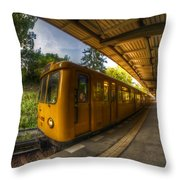 Summer Eveing Train. Throw Pillow