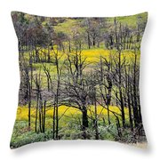 Summer Fields Of The Holy City Throw Pillow