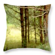 Summer Forest. Pine Trees Throw Pillow by Jenny Rainbow