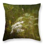 Summer Grasses Throw Pillow