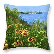 Summer In Toronto Park Throw Pillow by Elena Elisseeva