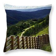 Summer In Vail - Colorado Throw Pillow