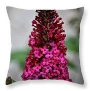 Summer Lilac Throw Pillow