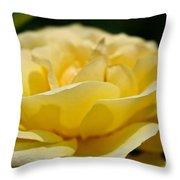 Summer Loves A Rose Throw Pillow