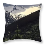 Summer Or Fall Throw Pillow