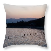Summer Palace Serenity Throw Pillow by Mike Reid