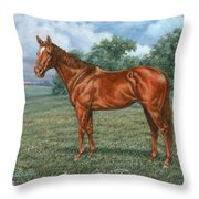 Summer Pasture Throw Pillow