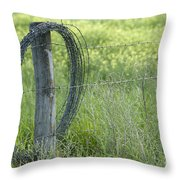 Summer Repairs Throw Pillow
