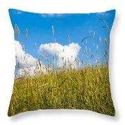Summer Serenity Throw Pillow