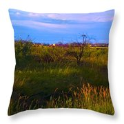 Summer Shot Of Old Shack By Creek, St Throw Pillow