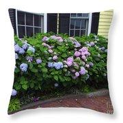 Summer Sidewalk Throw Pillow