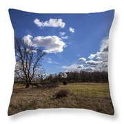 Summer Sky In The Fall Throw Pillow