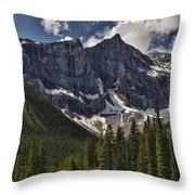 Summer Snow Throw Pillow