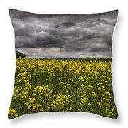 Summer Storm Clouds Over A Canola Field Throw Pillow