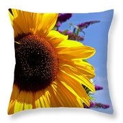 Summer Sunflower Throw Pillow