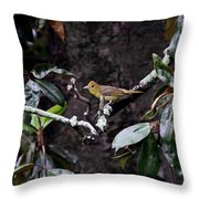 Summer Tanager Lady Throw Pillow
