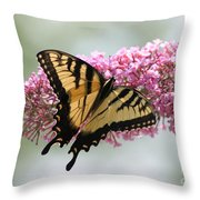 Summer Time Pleasures Throw Pillow