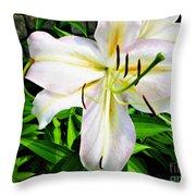 Summer White Madonna Lily Throw Pillow