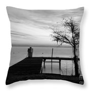 Summer's Gone Throw Pillow