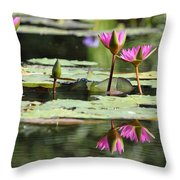 Summertime Magic Throw Pillow