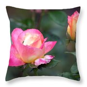 Summertime Sweetness Throw Pillow